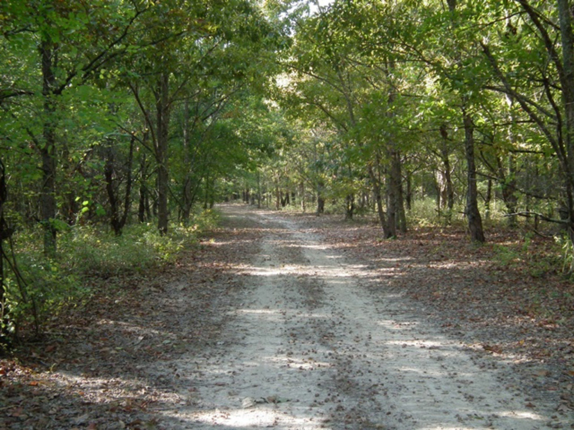 14 Well Maintained ATV Trails